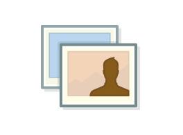 Einführung von Facebook-Fotos.