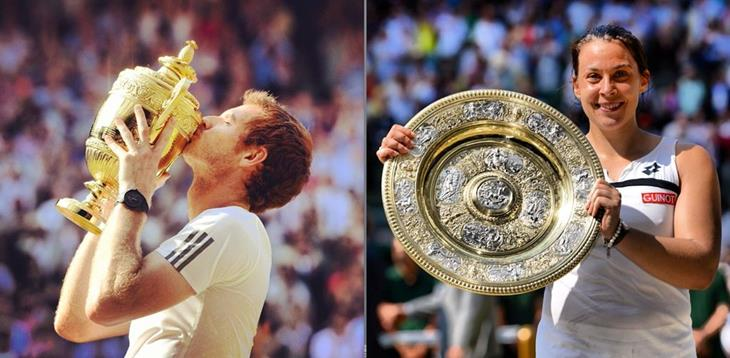 2013 Wimbledon Tennis Championships on Facebook