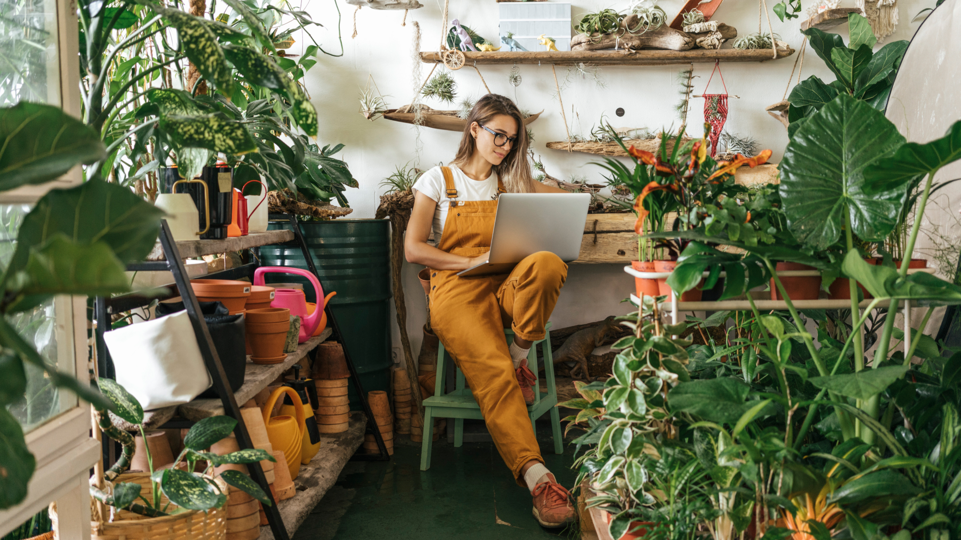 Image of woman on laptop with plants in the background